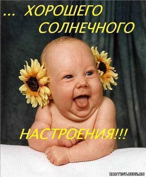http://kartiny.ucoz.ru/_ph/167/2/340750176.jpg
