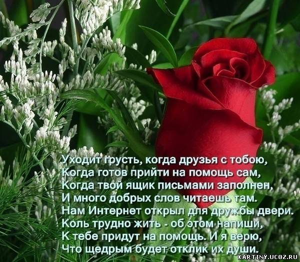 Добрый вечер » Поздравления, Пожелания, Тосты, Стихи