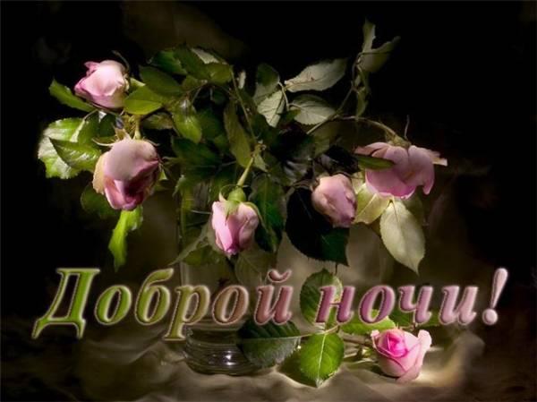 Спокойной ночи, доброй ночи и многие другие