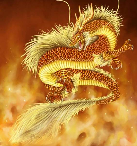 На тему драконы скачать бесплатно