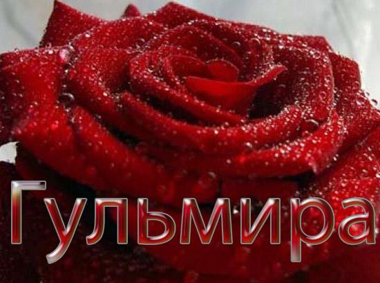 Красивые картинки живые цветы гифки картинки